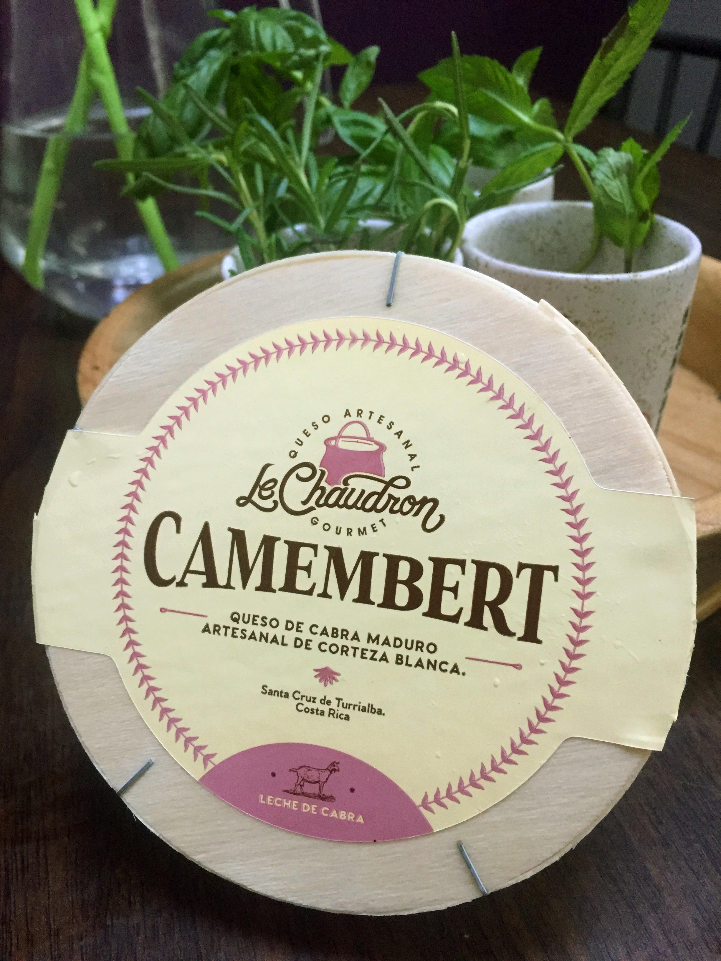Queso Camembert de cabra hecho en Turrialba, Costa Rica